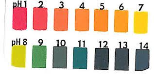Determine pH value with pH paper