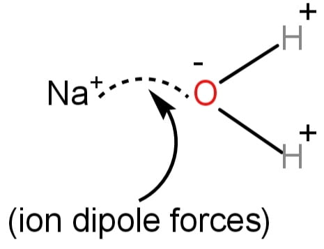 Ion dipole forces