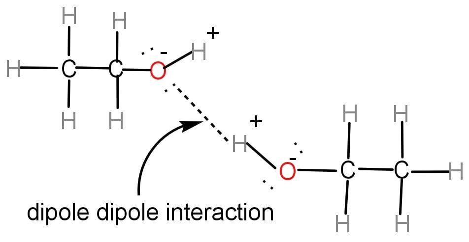 ethanol intermolecular forces